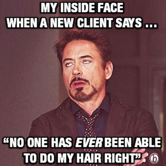 Funny Memes For Hairstylists : Hairdressing memes that get you adel professional